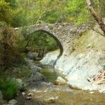 elia venetian bridge